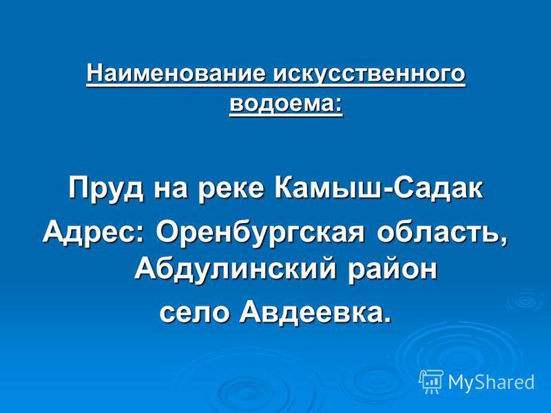 Наименование искусственного водоема: Пруд на реке Камыш-Садак Адрес: Оренбургская область, Абдулинский район село Авдеевка.