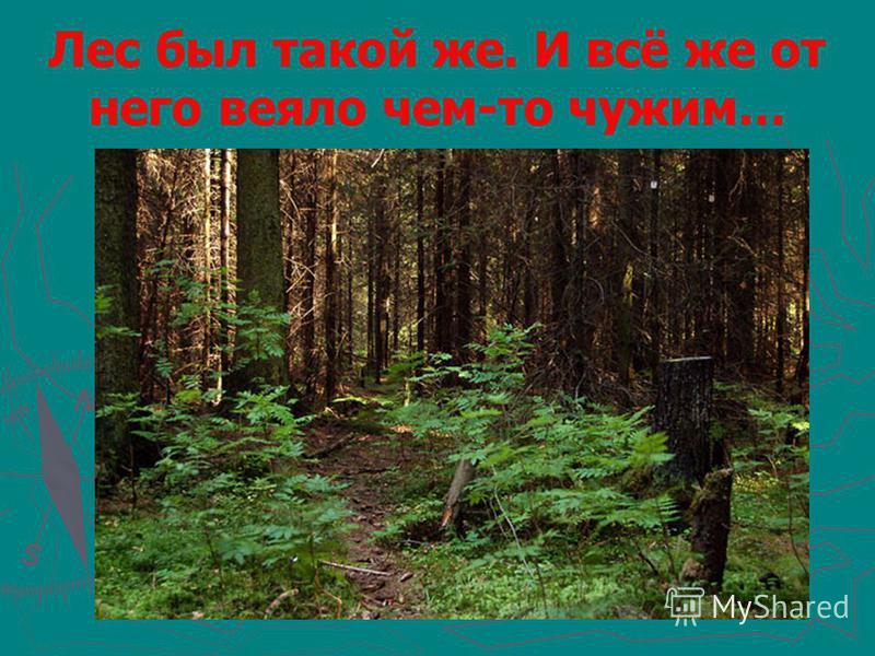 Лес был такой же. И всё же от него веяло чем-то чужим…
