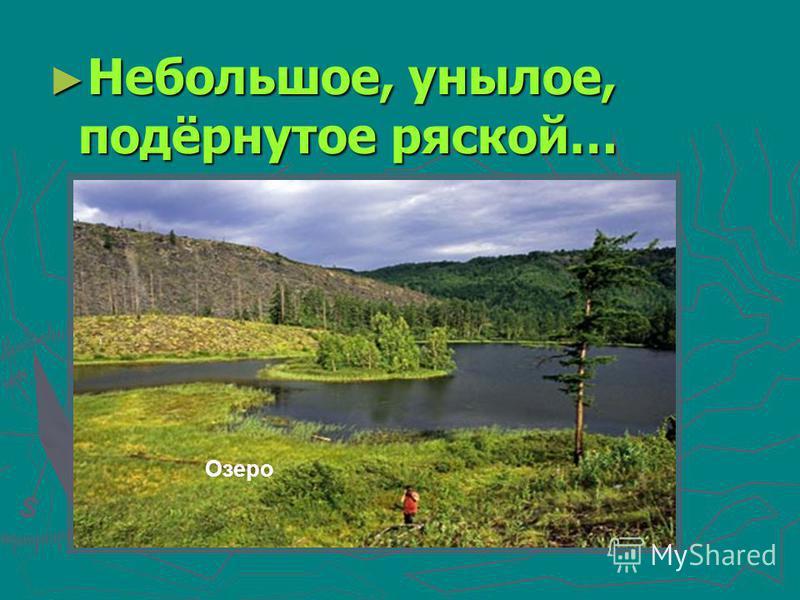 Небольшое, унылое, подёрнутое ряской… Небольшое, унылое, подёрнутое ряской… Озеро