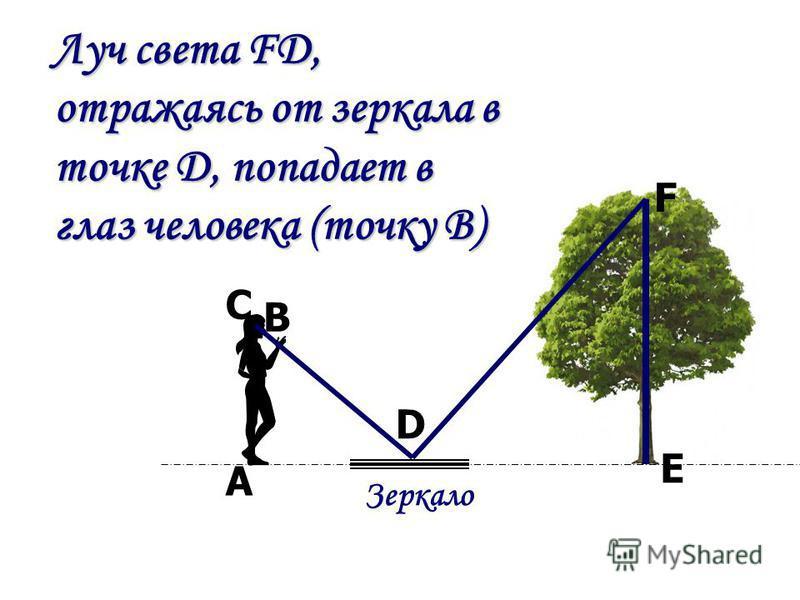 Луч света FD, отражаясь от зеркала в точке D, попадает в глаз человека (точку B) Луч света FD, отражаясь от зеркала в точке D, попадает в глаз человека (точку B) Зеркало F E D В А С