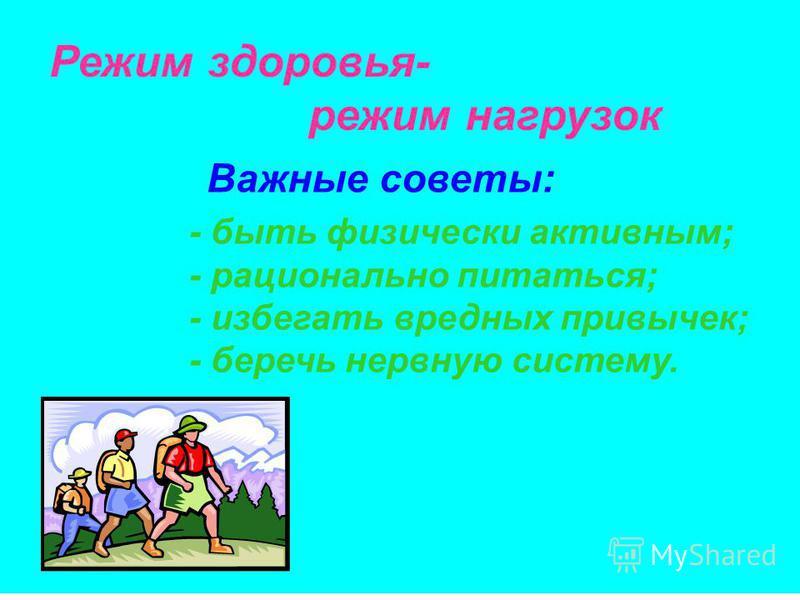 Режим здоровья- режим нагрузок Важные советы: - быть физически активным; - рационально питаться; - избегать вредных привычек; - беречь нервную систему.