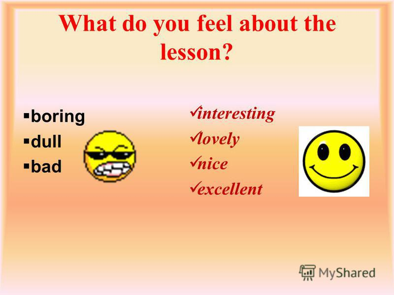 What do you feel about the lesson? boring dull bad interesting lovely nice excellent