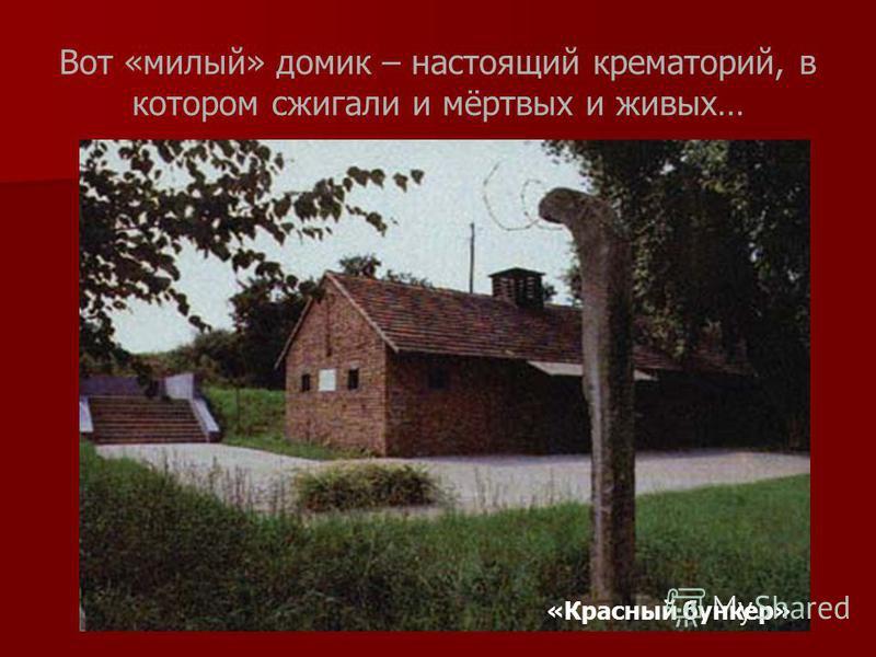 Вот «милый» домик – настоящий крематорий, в котором сжигали и мёртвых и живых… «Красный бункер»