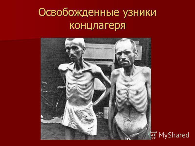 Освобожденные узники концлагеря