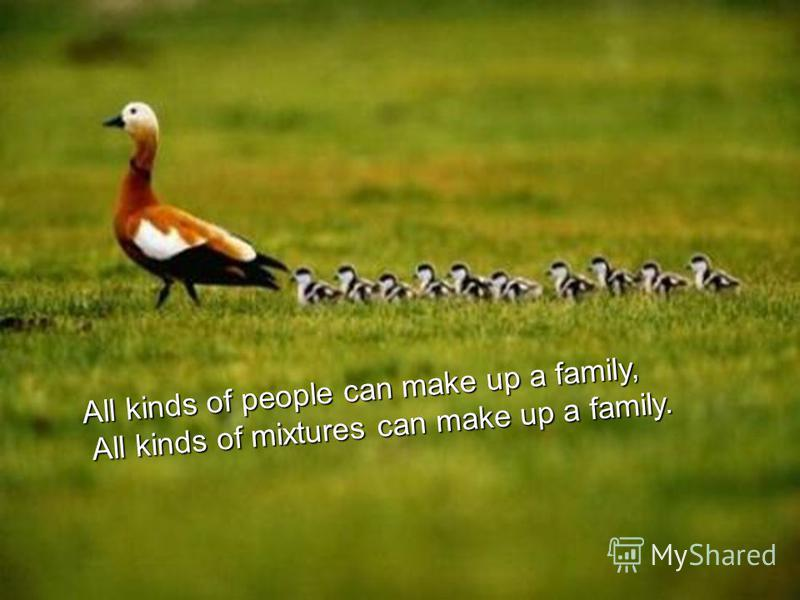 All kinds of people can make up a family, All kinds of mixtures can make up a family. All kinds of mixtures can make up a family.