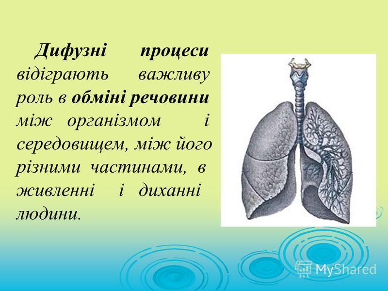 Дифузні процеси відіграють важливу роль в обміні речовини між організмом і середовищем, між його різними частинами, в живленні і диханні людини.