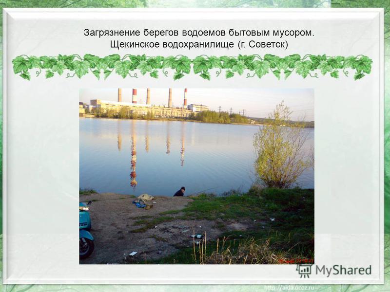 Загрязнение берегов водоемов бытовым мусором. Щекинское водохранилище (г. Советск)