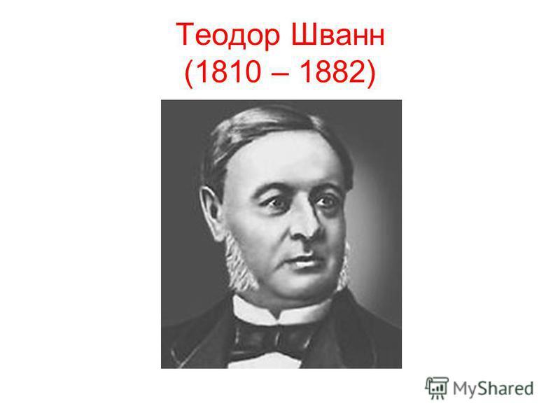 Теодор Шванн (1810 – 1882)