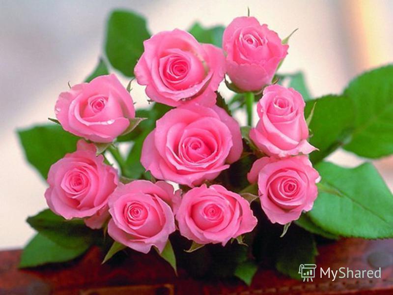 Пусть всегда женский день не кончается, Пусть поют в Вашу честь ручейки, Пусть солнышко Вам улыбается, А мужчины Вам дарят цветы. С первой капелью, с последней метелью, С праздником ранней весны Вас поздравляем, сердечно желаем Радости, счастья, здор