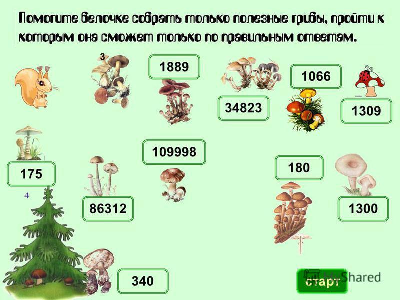 1889 1066 130086312 340 109998 180 1309 34823 175 старт 3