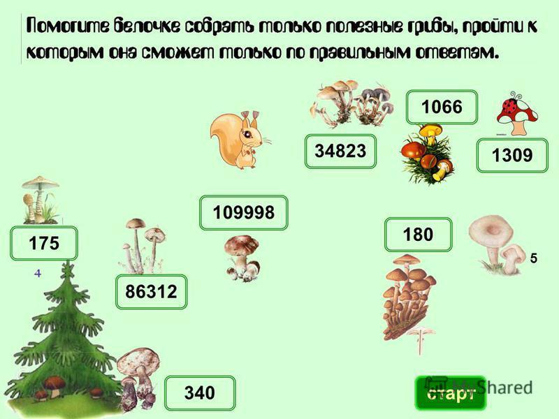 1066 86312 340 109998 180 1309 34823 175 старт 5