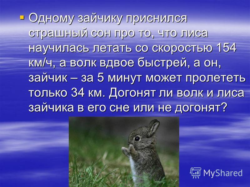 Одному зайчику приснился страшный сон про то, что лиса научилась летать со скоростью 154 км/ч, а волк вдвое быстрей, а он, зайчик – за 5 минут может пролететь только 34 км. Догонят ли волк и лиса зайчика в его сне или не догонят? Одному зайчику присн