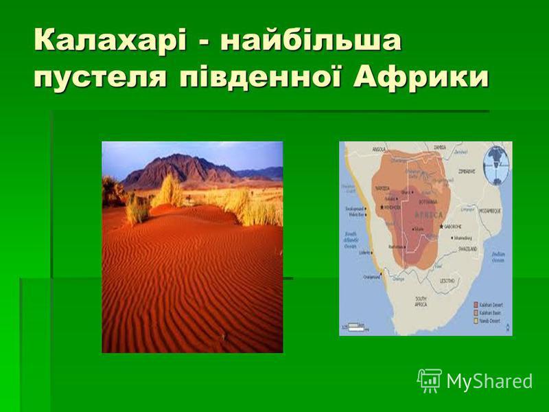 Калахарі - найбільша пустеля південної Африки