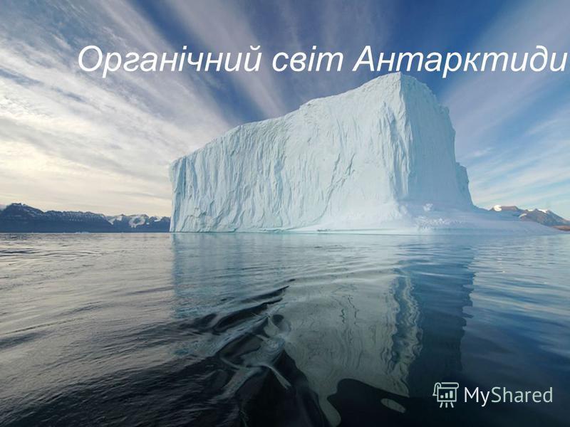 Органічний світ Антарктиди