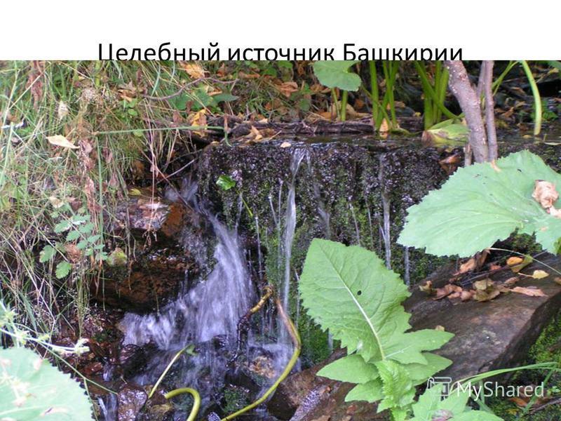 Целебный источник Башкирии