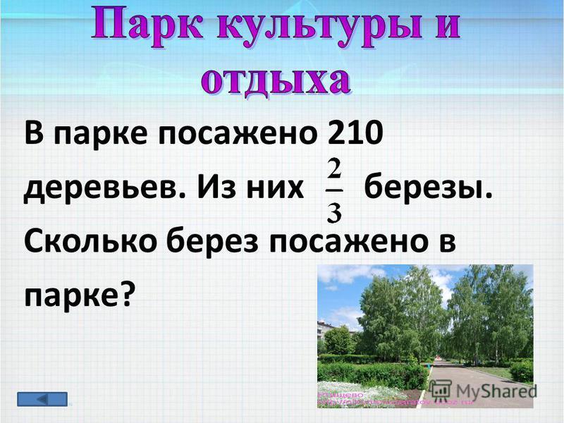 В парке посажено 210 деревьев. Из них березы. Сколько берез посажено в парке?