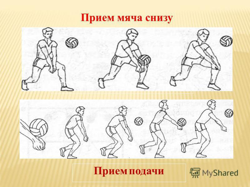 Прием подачи Прием мяча снизу