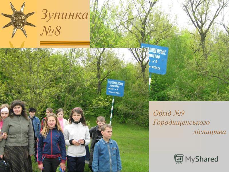 Зупинка 8 Обхід 9 Городищенського лісництва