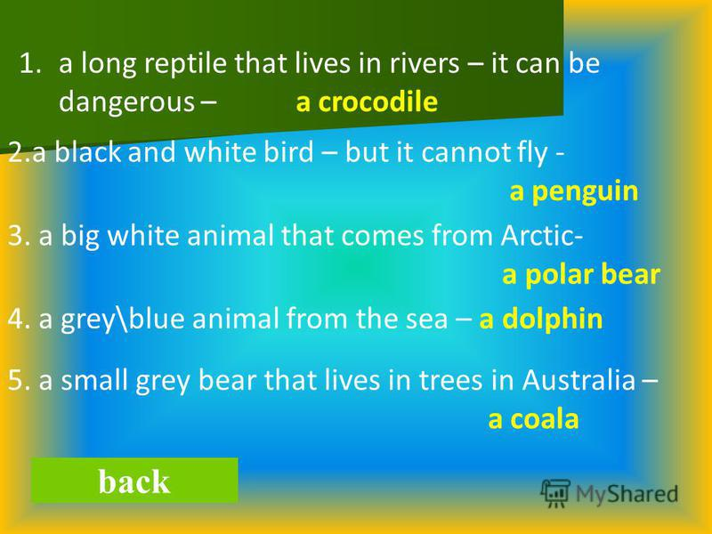 back 1.a long reptile that lives in rivers – it can be dangerous – a crocodile 2.a black and white bird – but it cannot fly - a penguin 3. a big white animal that comes from Arctic- a polar bear 4. a grey\blue animal from the sea – a dolphin 5. a sma