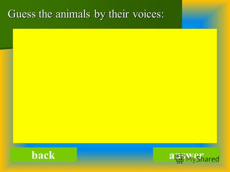 Guess the animals by their voices: backanswer