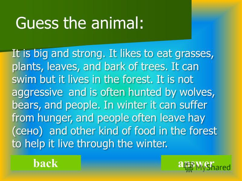 answer Guess the animal: It is big and strong. It likes to eat grasses, plants, leaves, and bark of trees. It can swim but it lives in the forest. It is not aggressive and is often hunted by wolves, bears, and people. In winter it can suffer from hun