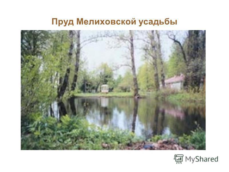 Пруд Мелиховской усадьбы