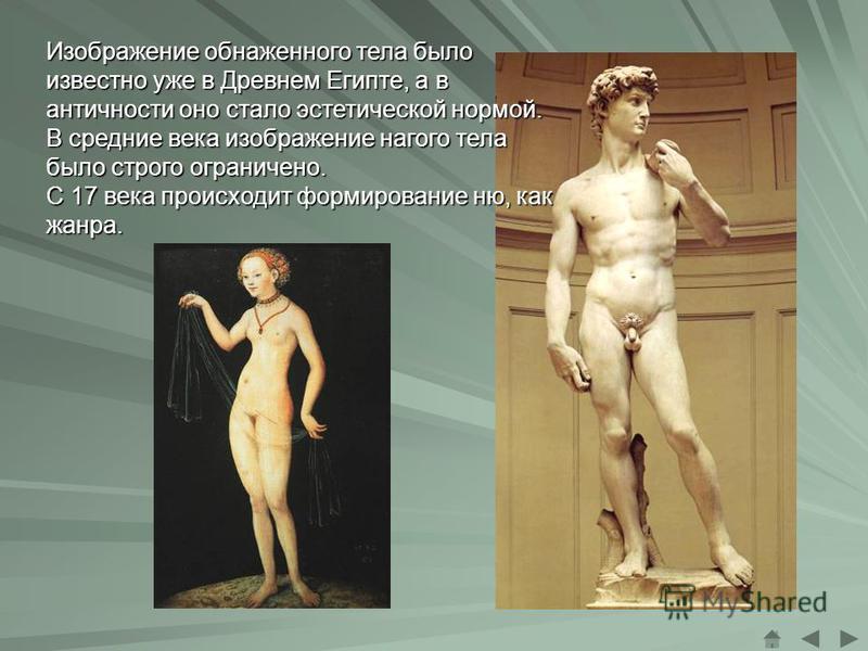 Изображение обнаженного тела было известно уже в Древнем Египте, а в античности оно стало эстетической нормой. В средние века изображение нагого тела было строго ограничено. С 17 века происходит формирование ню, как жанра.