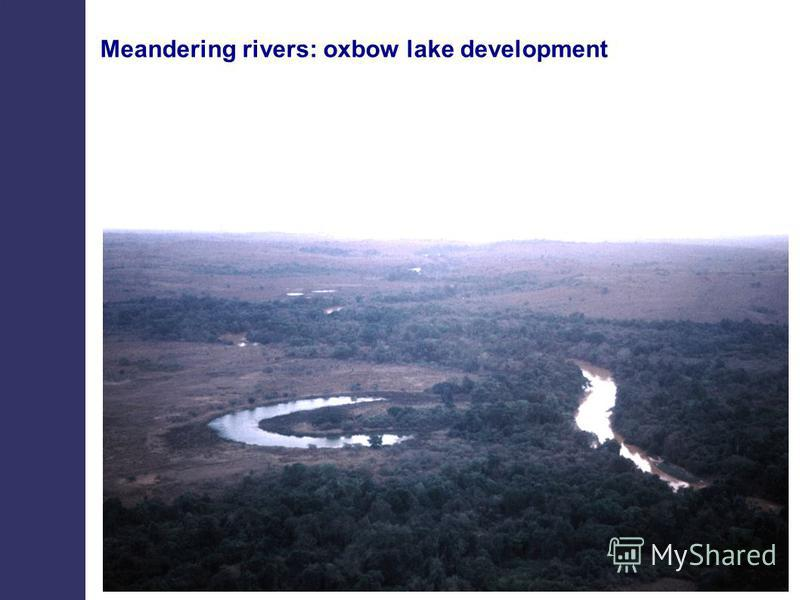 Meandering rivers: oxbow lake development