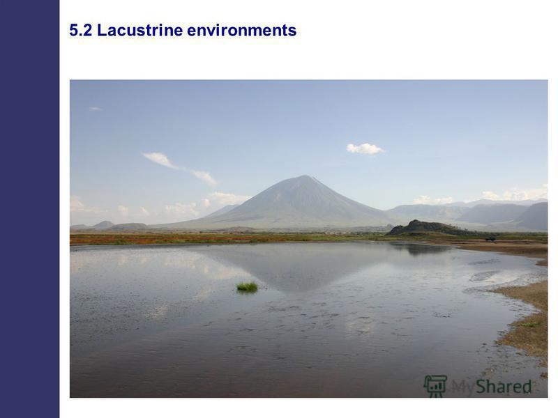 5.2 Lacustrine environments