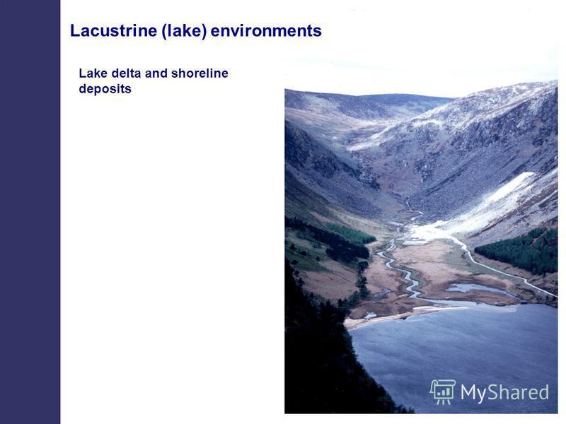 Lacustrine (lake) environments Lake delta and shoreline deposits
