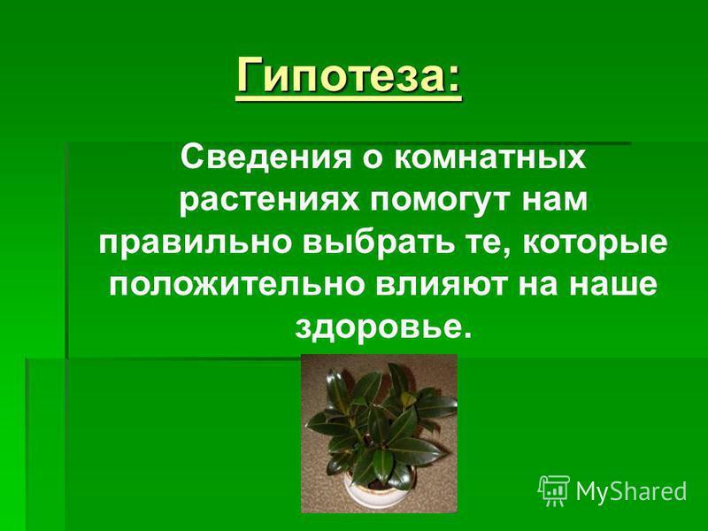 Гипотеза: Сведения о комнатных растениях помогут нам правильно выбрать те, которые положительно влияют на наше здоровье.