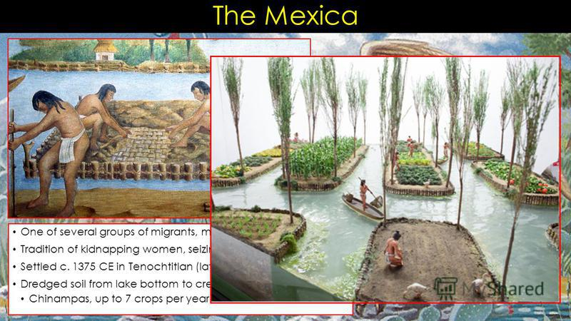 The Mexica One of several groups of migrants, mid 13 th c. CE Tradition of kidnapping women, seizing cultivated lands Settled c. 1375 CE in Tenochtitlan (later becomes Mexico City) Dredged soil from lake bottom to create fertile plots of land Chinamp