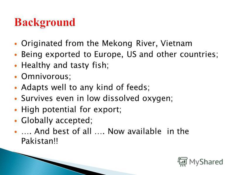 Originated from the Mekong River, Vietnam Being exported to Europe, US and other countries; Healthy and tasty fish; Omnivorous; Adapts well to any kind of feeds; Survives even in low dissolved oxygen; High potential for export; Globally accepted; ….
