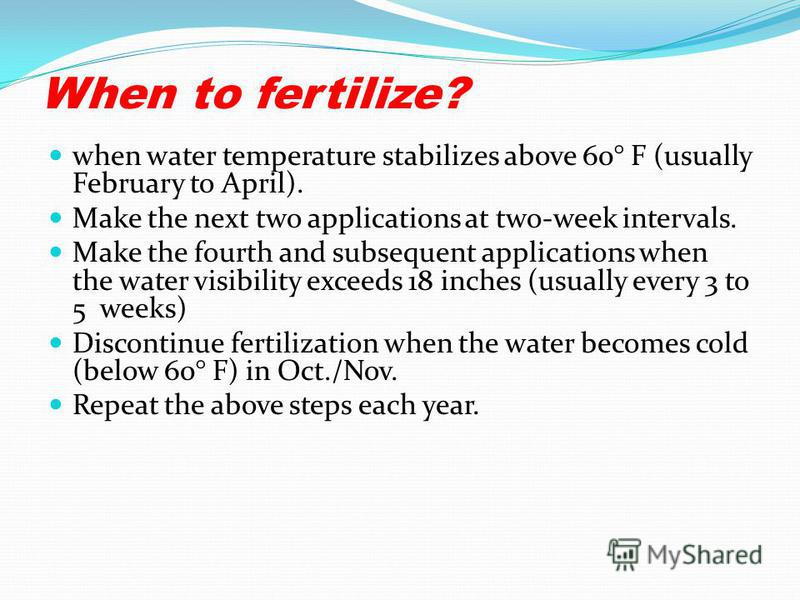When to fertilize? when water temperature stabilizes above 60° F (usually February to April). Make the next two applications at two-week intervals. Make the fourth and subsequent applications when the water visibility exceeds 18 inches (usually every