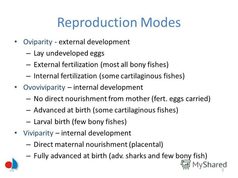 Reproduction Modes Oviparity - external development – Lay undeveloped eggs – External fertilization (most all bony fishes) – Internal fertilization (some cartilaginous fishes) Ovoviviparity – internal development – No direct nourishment from mother (