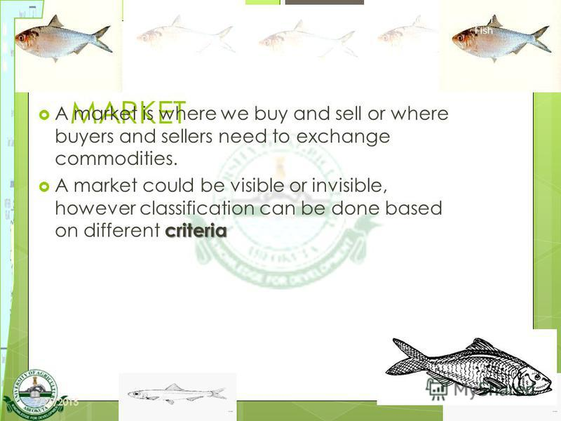 5 MARKET A market is where we buy and sell or where buyers and sellers need to exchange commodities. criteria A market could be visible or invisible, however classification can be done based on different criteria Harvesting and Marketing of Fish N. B