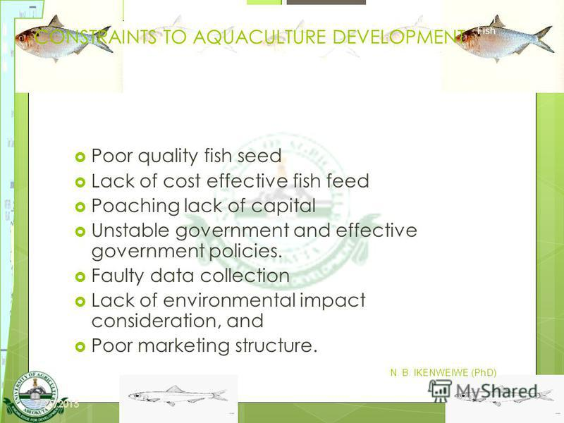 8 CONSTRAINTS TO AQUACULTURE DEVELOPMENT Poor quality fish seed Lack of cost effective fish feed Poaching lack of capital Unstable government and effective government policies. Faulty data collection Lack of environmental impact consideration, and Po
