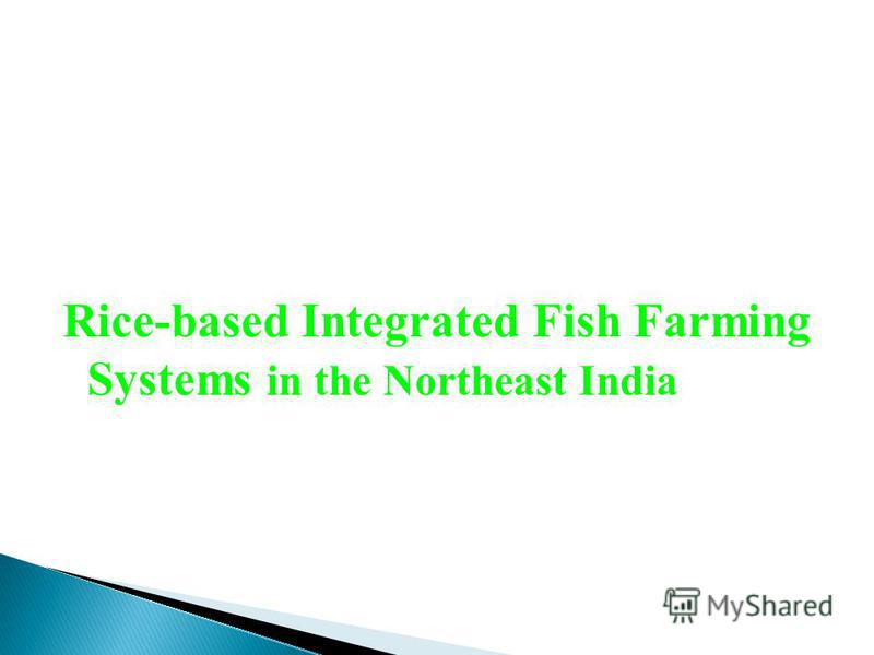 Rice-based Integrated Fish Farming Systems in the Northeast India