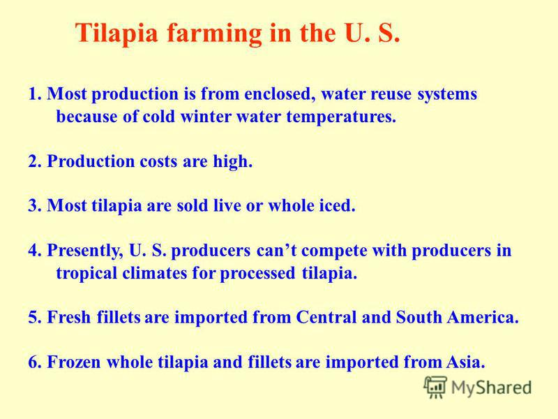 1. Most production is from enclosed, water reuse systems because of cold winter water temperatures. 2. Production costs are high. 3. Most tilapia are sold live or whole iced. 4. Presently, U. S. producers cant compete with producers in tropical clima