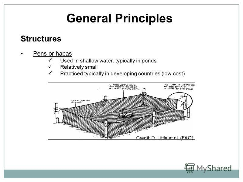 General Principles Structures Pens or hapas Used in shallow water, typically in ponds Relatively small Practiced typically in developing countries (low cost) Credit: D. Little et al. (FAO)