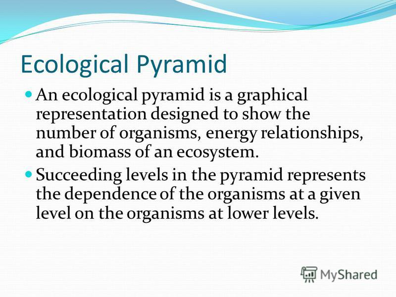 Ecological Pyramid An ecological pyramid is a graphical representation designed to show the number of organisms, energy relationships, and biomass of an ecosystem. Succeeding levels in the pyramid represents the dependence of the organisms at a given