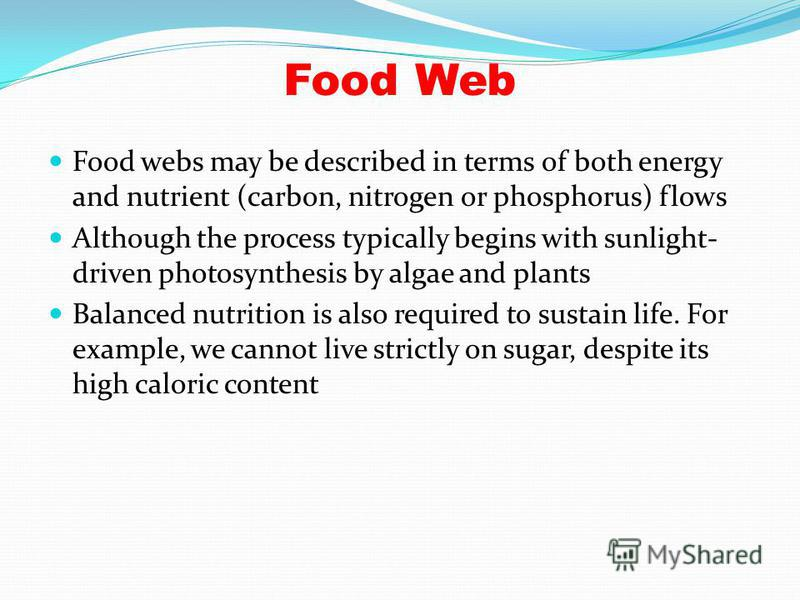 Food Web Food webs may be described in terms of both energy and nutrient (carbon, nitrogen or phosphorus) flows Although the process typically begins with sunlight- driven photosynthesis by algae and plants Balanced nutrition is also required to sust