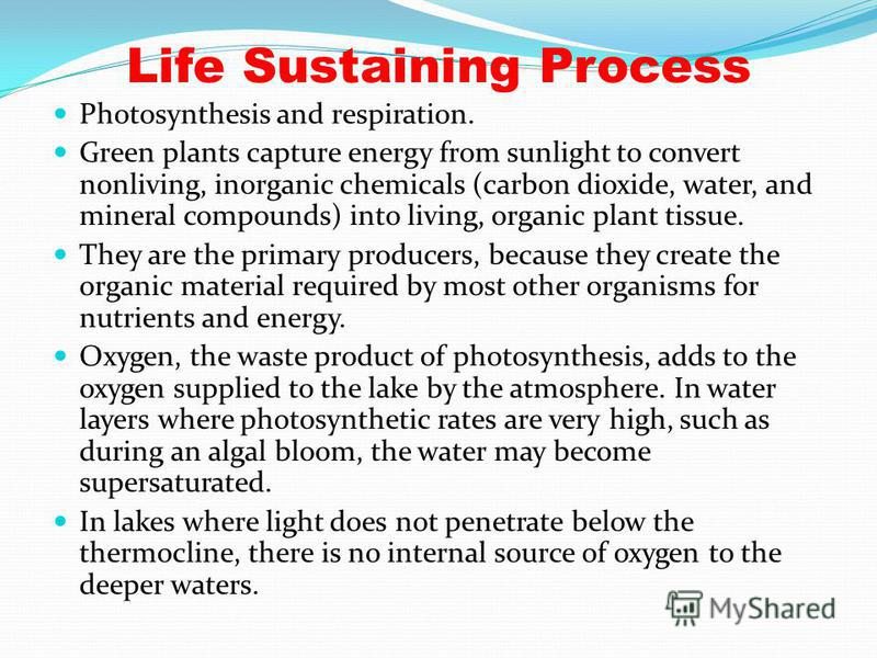 Life Sustaining Process Photosynthesis and respiration. Green plants capture energy from sunlight to convert nonliving, inorganic chemicals (carbon dioxide, water, and mineral compounds) into living, organic plant tissue. They are the primary produce