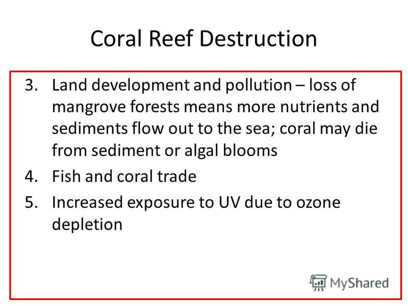Coral Reef Destruction 3.Land development and pollution – loss of mangrove forests means more nutrients and sediments flow out to the sea; coral may die from sediment or algal blooms 4.Fish and coral trade 5.Increased exposure to UV due to ozone depl