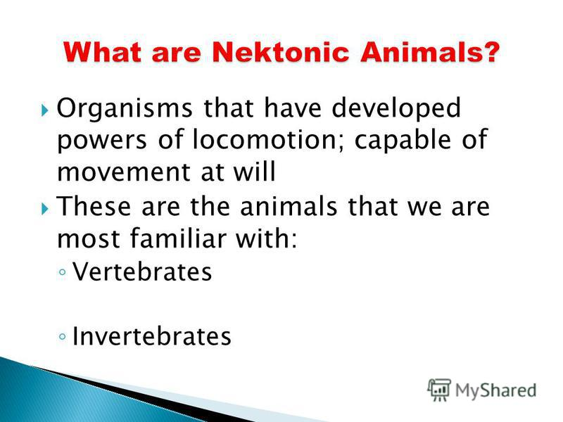 Organisms that have developed powers of locomotion; capable of movement at will These are the animals that we are most familiar with: Vertebrates Invertebrates