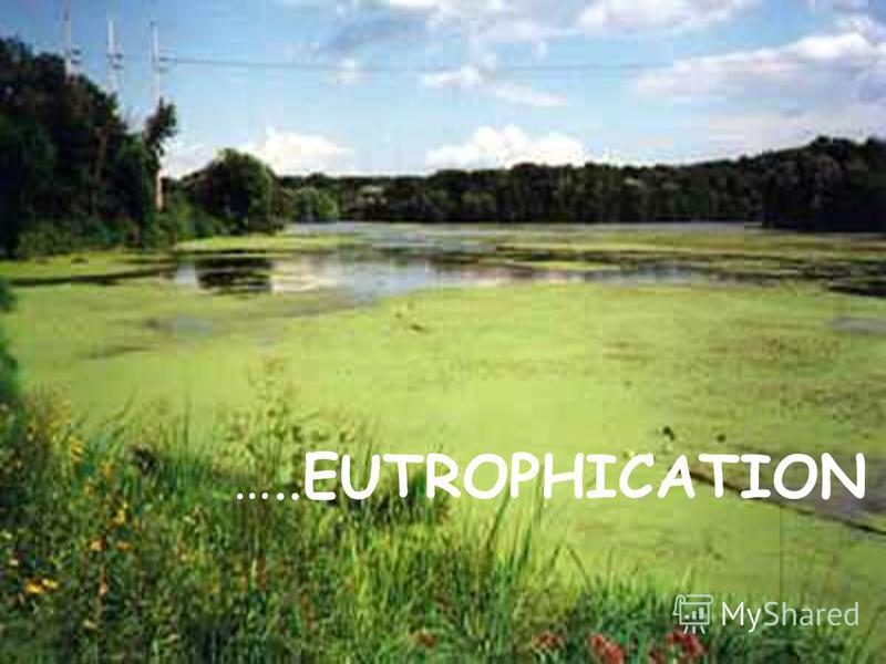…..EUTROPHICATION