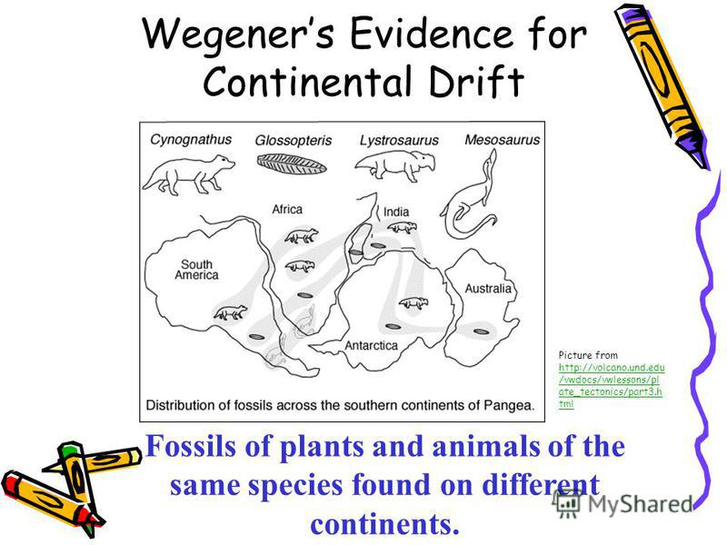 Continental Drift Worksheet Puzzle - Worksheets