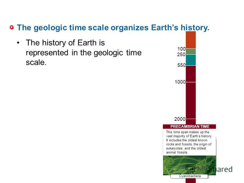 The geologic time scale organizes Earths history. The history of Earth is represented in the geologic time scale. 100 250 550 1000 2000 PRECAMBRIAN TIME Cyanobacteria This time span makes up the vast majority of Earths history. It includes the oldest