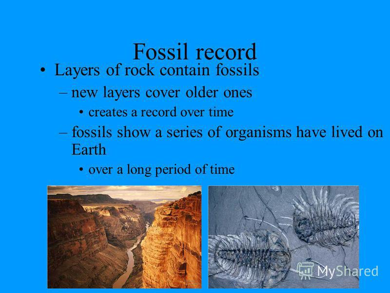 Why use fossils? Scientists have used the fossil record to construct a history of life on Earth. –Earths life forms appeared 3.5 billion years ago –Fossil record is not complete, but pretty good for general information