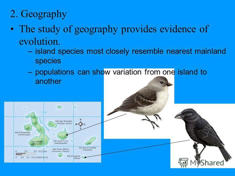 Similarities in Embryos www.encarta.com Figure 7